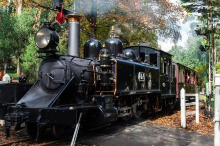 Puffing_Billy_at_crossing