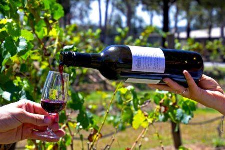 hunter-valley-wine-sydney-aat