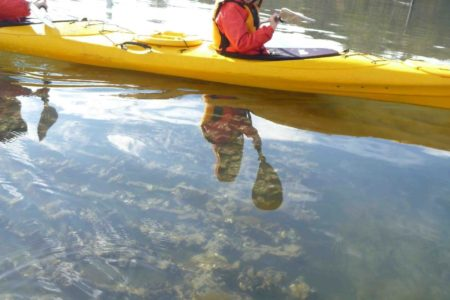 kayaking-tour-batemans-bay