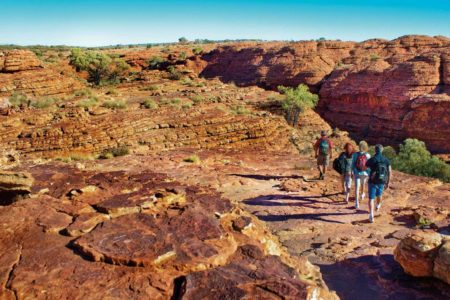 kings-canyon-outback-panoramas-red-center