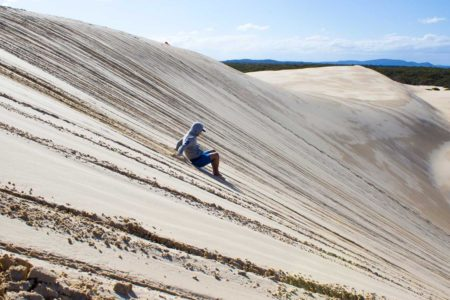 port-stephens-dolphins-dune-aat