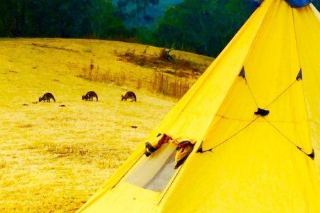 camping_near_the_kang