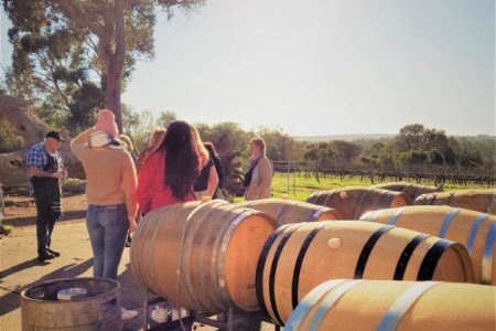 Coffee & Olive Tastings, Wineries, Forest & Lunch
