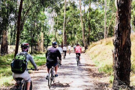 Yarra Valley cycle
