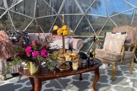 truffle_farm