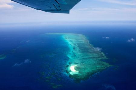 Reef Hopper Cairns