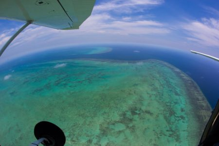 Reef and Port Douglas